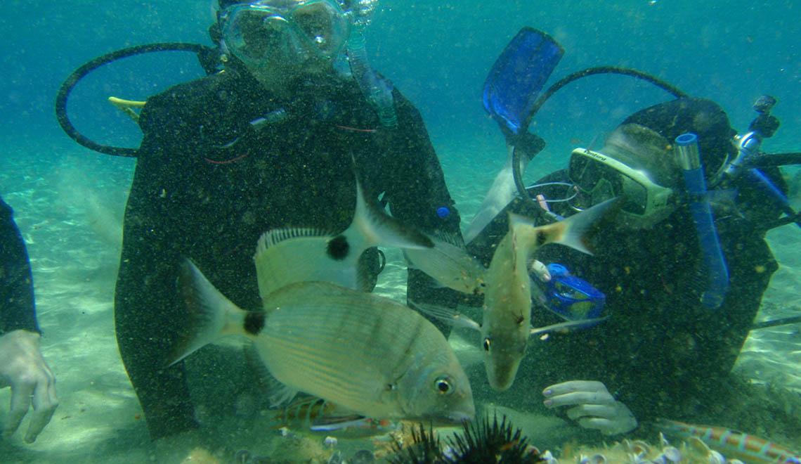 Scuba Diving on Paros Greece