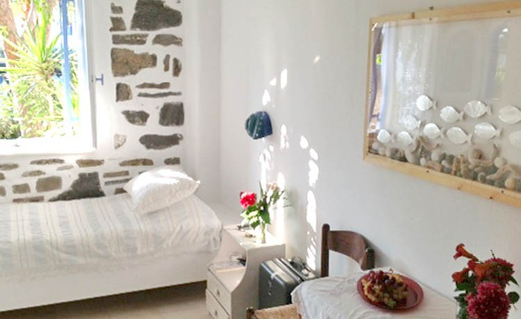 Holiday Apartment on Paros Greece in Drios